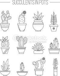 Clipart Vectoriel Set Of Succulent Plants And Cactuses In Pots