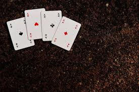 Азартные игры карты
