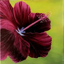 hibiscus flower canvas art acrylic painting