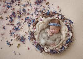 Feathering Light Newborn Photography Newborn Photography Natalie Houlding Photography