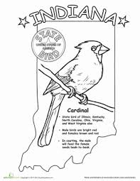 indiana state bird life science indiana state bird worksheet education com on states worksheets
