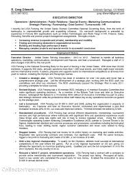 Non Profit Resume Legal Resume Sample Consultant Youth At Risk Research Businessan 99