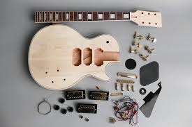 cover image for the diy guitar kit er s guide
