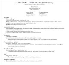 Skills In A Resume How To List Basic Computer Skills On Resume