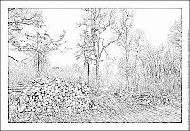 logging coloring pages wood pile coloring pages printable free logging coloring page