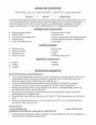 Sample Combination Resume Format Unique Bination Resume Example New