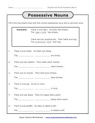 Singular And Plural Possessive Nouns Worksheets 3Rd Grade ...