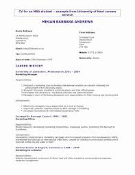 3 Years Experience Marketing 3 Resume Format Student Resume