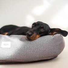 Dog bed quadro Pony grey – Hunting Pony
