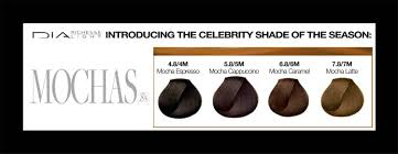 l oréal professionnel dia richesse light introducing 4 new mochas shades november 2016 hair color chartscolour