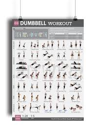 Cheap Workout Bar Exercises Find Workout Bar Exercises