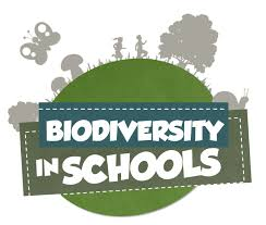 Image result for bio-diversity for kids