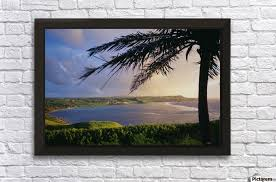 guam view of pago bay from university of guam silhouette of palm tree wall