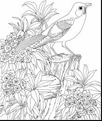 nature colouring pages for adults. Perfect Pages Scenery Coloring Pages Adult Printable For Adults Prixducommerce Com Within Intended Nature Colouring