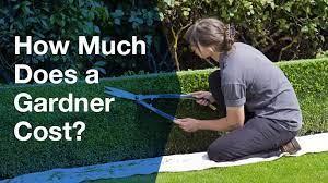 mulch yard business es cost of