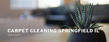 carpet cleaning springfield il 1101 kingshighway