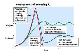 Just A Chart Bottleneck