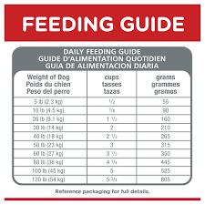 Hills Science Diet Adult Sensitive Stomach Skin Chicken Recipe Dry Dog Food 30 Lb Bag