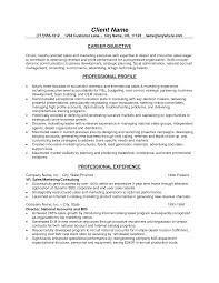 Resume Objective Samples For Sales Resume Objective Examples For