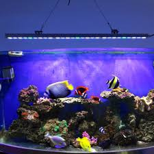 5pcs lot 81w waterproof led aquarium bar light hard strip lamp for c reef plant growth beauty fish tank lighting us de stock in led grow lights from