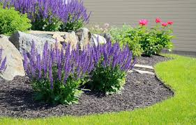 10 simple landscaping ideas for your
