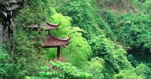 Resultado de imagen para China + bosques