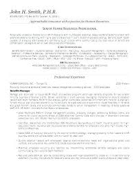 Example Of A Summary For A Resume Beauteous Example Of Resume Summary Example Of Resume With Summary Statement48