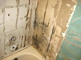 home black mold in bathroom removal walls depot ceiling clean mould without bleach