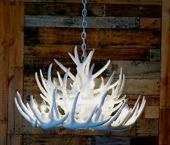 pure white whitetail 21 cast cascade antler chandelier