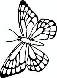 56c3c70bdf210d37f902f9b1df52efc6 animal outlines to print ladybug outline template printables on virtual center template fails