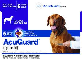 Prescription Oral Flea Control Medication For Dogs Whole