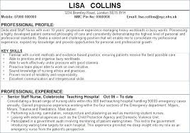 Resume Profile Section Examples Profile Section Of Resume Examples ...