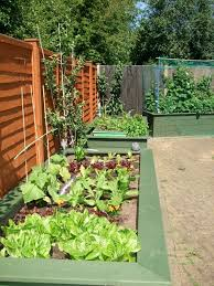 Small Picture 22 best Accessible Gardening images on Pinterest Raised beds