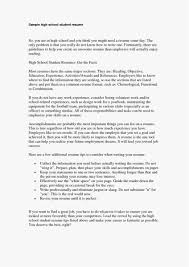 Sample Combination Resume Best Of Resume Format Examples Best