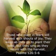 Image result for Psalm 126:5-6 green