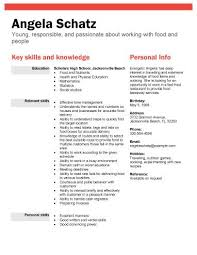 Job Resume Format Sample Templates For High School Students With No