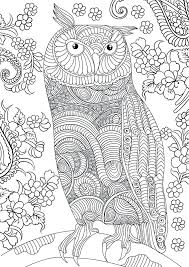 Free Printable Color Pages For Adults Colouring Pages For Grown Ups