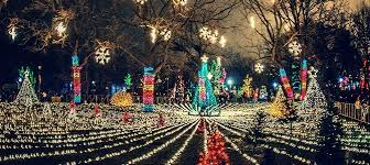 Image result for lincoln park zoo lights hours