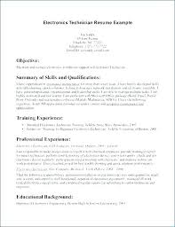 Resume Example For Students Inspiration Examples Of Professional Summary On A Resume Student Resume Summary