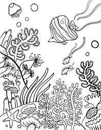 Www Biopedia Com Wp Content Uploads 2014 05 Arrecife Coral Gif