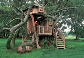 different types of houses treehouse taster 3 wildly different types of tree houses urbanist