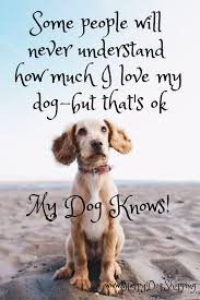Dog Quotes Love And Loyalty Happydogshopping My Fur Babies