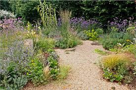 Small Picture Gravel gardensRHS Gardening