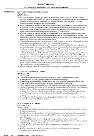 Business System Analyst Sample Resume Business System Analyst Resume Samples Velvet Jobs 11