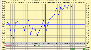 Body Temperature During Ovulation Chart 17 This Chart Shows A Slow But Steady Rise In Basal Body