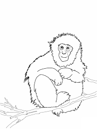 Monkey Coloring Pages Kids Sketch Super Coloring Page