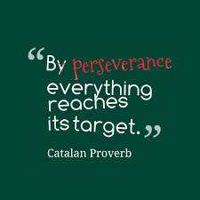 Inspirational Quotes About Perseverance Inspirational Quotes About Perseverance QUOTES OF THE DAY 97