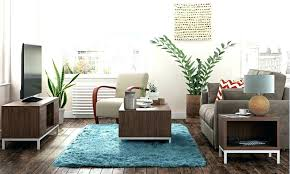 Interior Decorating Tips Living Room Delectable Pictures Of Small Contemporary Living Rooms Room Ideas Space Pics