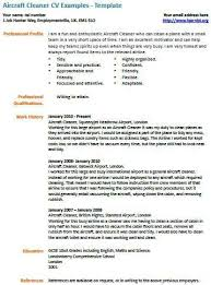 Cv Examples Cleaner Job Cover Letter Examples Template Samples Cool Template Resume