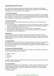 Sample Healthcare Marketing Resume 015 Marketing Plane Executive Summary Healthcare Lovely